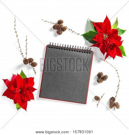 Christmas flower Poinsettia and empty sketchbook page. Floral Flat lay background