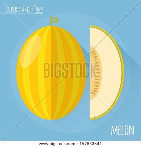 Honey melon. Long shadow flat design vector icon.