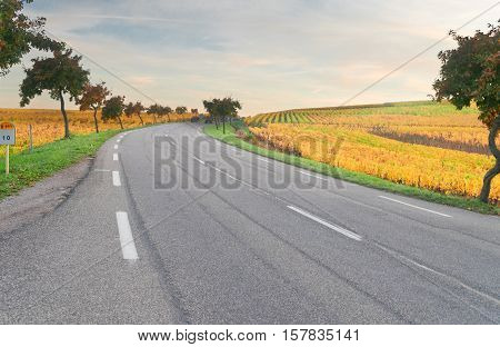 Road with autumn vineyards of Route des Vin, France, Alsace