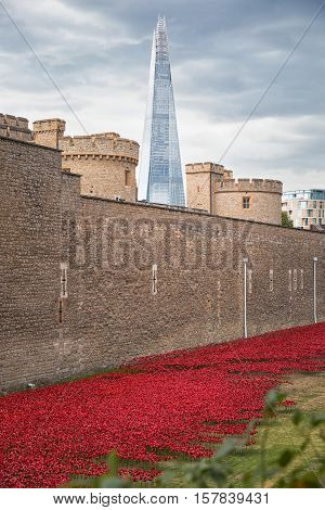 August 2014 - London United Kingdom: Almost 900000 ceramic poppies are installed at The Tower of London to commemorate Britain's involvement in the First World War.