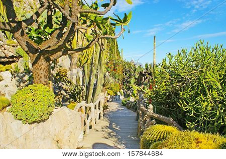 Jardin Exotique botanical garden is one of the most popular tourist attractions in Monaco.