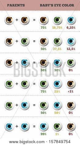 Baby eye color predictor. Likelihood of eyes color of the baby. 3D illustration