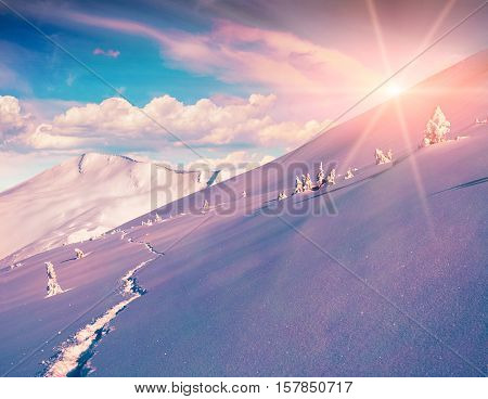Sunny Winter Morning In The Mountains.