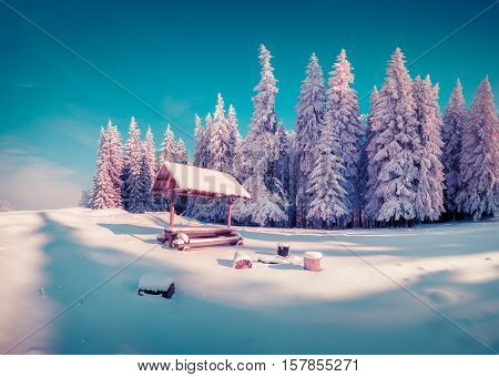 Resting Place With Alcove In The Snowy Mountain Forest In Sunny Morning.