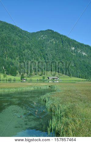 Lake Pillersee in Pillersee Valley near Sankt Ulrich am Pillersee,Tirol,Austria