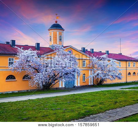 Spring evening scene in Wilhelmshohe Park. Blossom cherry trees in the velcome Germany town Kassel German Europe.