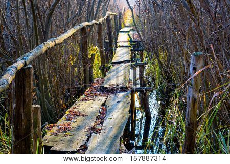 old wooden bridge across river in autumn forest