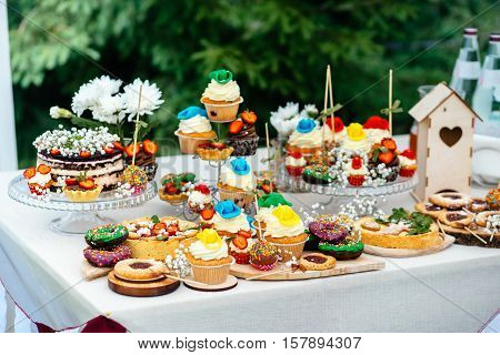 Candy bar with a huge assortment of Goodies. Cottage cheese cupcakes, cakes, cookies on sticks.