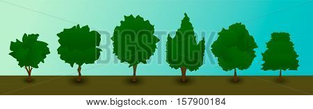 Set of several flat trees different shapes of krone. Vector illustration.