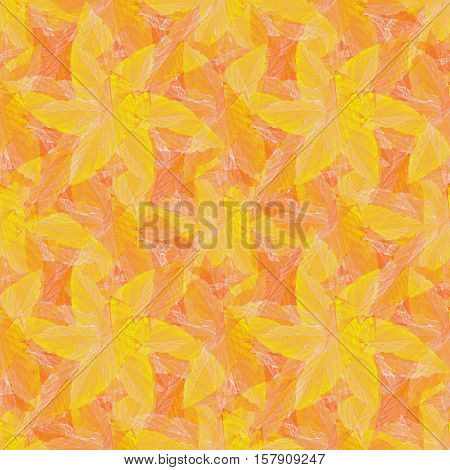 Vivid Tropical Style Pattern