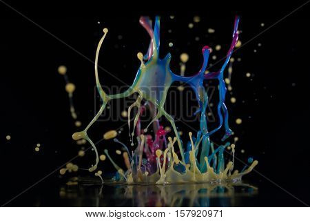 Abstract sculptures of colorful splashes of paint. Dancing liquid on a black background. Ink water splash. Color explosion.
