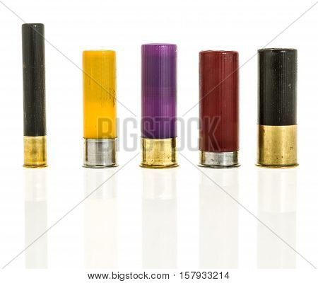 Different Shotgun Calibers