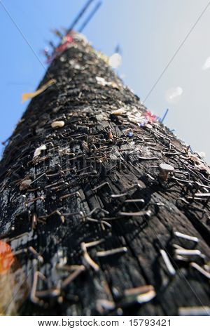 Stapled post, wide angle close-up.