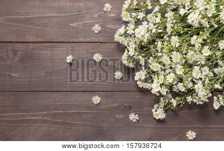 White Cutter Flowers Are On The Wooden Background