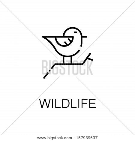 Wildlife flat icon. Single high quality outline symbol of outdoor activity for web design or mobile app. Thin line signs of bird for design logo, visit card, etc. Outline pictogram of wildlife