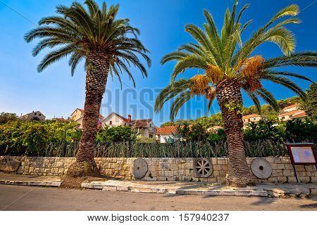 Palms and architecture of Splitska village Island of Brac Croatia