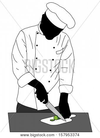 chef cooking illustration - vector