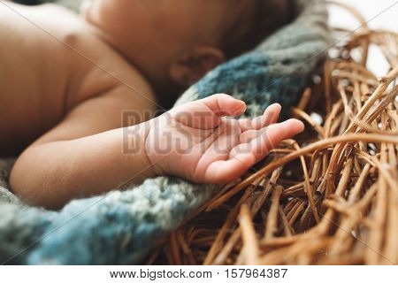 Close-up of tiny newborn kid hand in nest. Cute little baby arm on wicker cradle. Innocence, love, new life concept