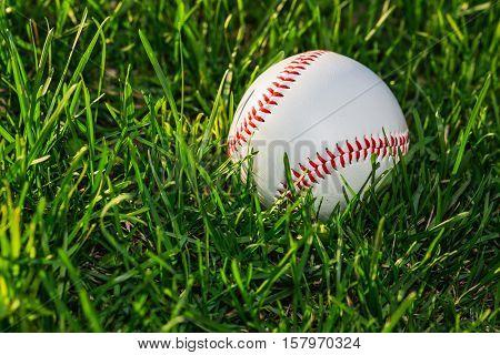 Baseball Ball On Grass Field