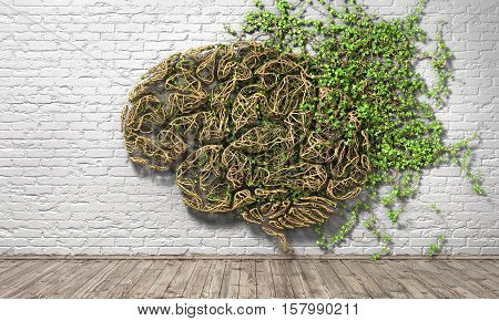 Concept of thinking. The green plant in form of human brain on a white brick wall background and wood floor. Thought breaks out. 3d illustration