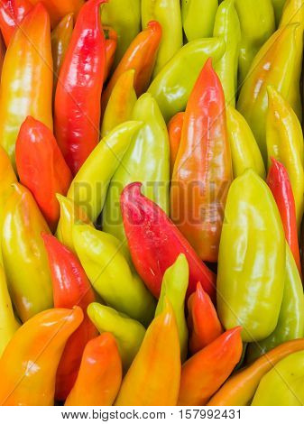 Background of a stacked colourful peppers on sale at the market. Green and red sweet peppers close up.