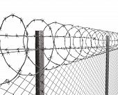 Chainlink fence with barbed wire on top closeup isolated on white background poster