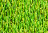 Green Grass Patch Abstract Background Pattern Texture poster