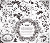 vector set: calligraphic design elements and page decoration - lots of useful elements to embellish your layout poster