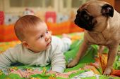 Cute baby girl looking at pug dog. Closeup, shallow DOF. poster