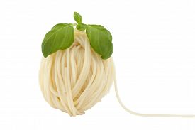 spaghetti in shape ball with fresh basil on white