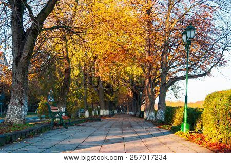 Green City Light On Autumn Embankment. Beautiful Urban Scenery With Colorful Foliage On Trees In The