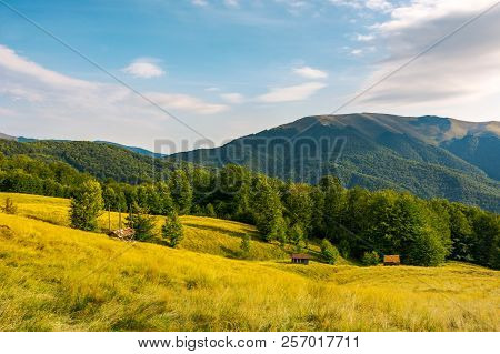 Countryside In Mountains. Beautiful Landscape With Grassy Alpine Hills. Abandoned Woodshed And Hay B