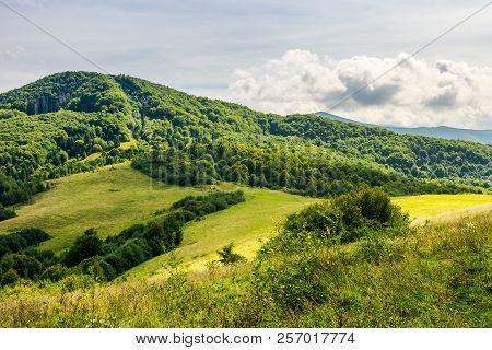 Grassy Meadow In Hills. Lovely Nature Scenery Of Early Autumn In Mountains