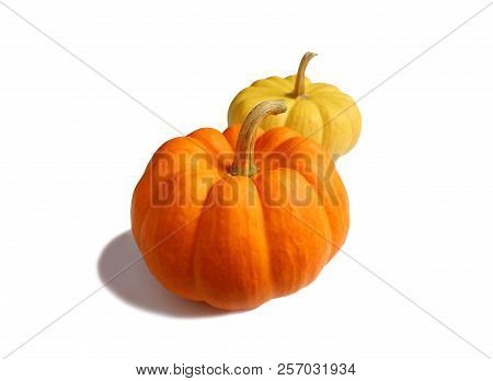 Vivid Orange Color And Vibrant Yellow Ripe Pumpkins With Stem Isolated On White Background