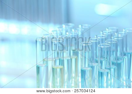 Rack With Test Tubes In Laboratory, Closeup. Chemical Analysis
