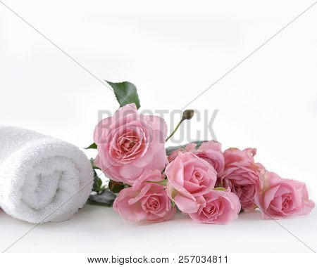 Lying on pink rose with rolled towel ,black stones on white background