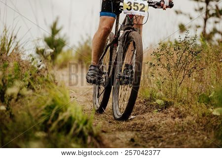 Wheels And Legs Cyclist On Mountainbike Biking On Forest Trail