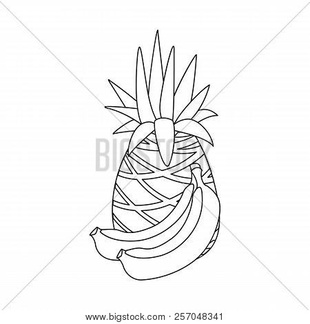 Isolated Object Of Food And Drink Icon. Collection Of Food And Store Stock Vector Illustration.