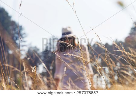 People in vacation. Lifestyles. Healthy lifestyles.Beautiful girl walk in meadow. Lifestyles concept. Vacation concept. Young beautiful girl walking in meadow. Beautiful girl relaxing in meadow. Beautiful girl in nature. Beautiful. Girl. Meadow. Nature.