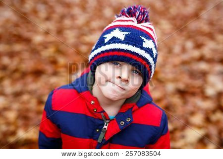 Portrait Of Happy Cute Little Kid Boy With Autumn Leaves Background In Colorful Clothing. Funny Chil