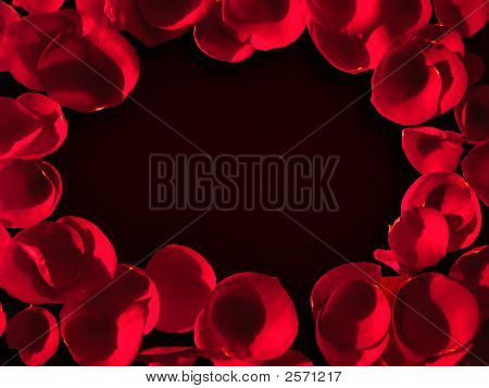 Rose Petals On Black Background