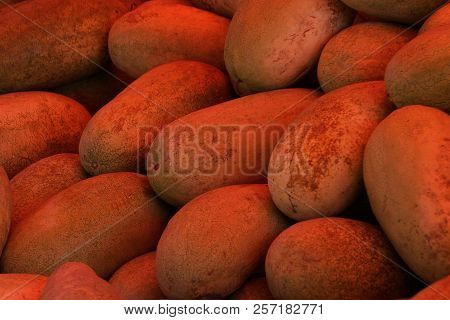 Natural Vegetative Texture Of Long Red Brown Melons