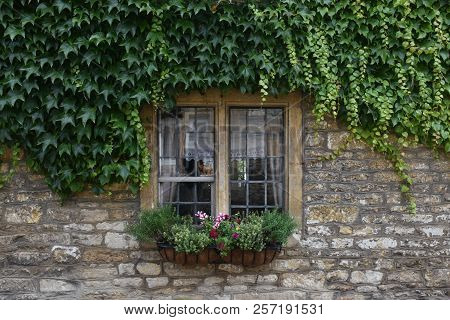 The Wooden Window Shows The Traces Of The Water Moon, The Top Is Covered With Green Plants, The Wind