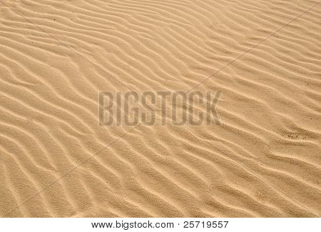 Windblown sand suitable for background