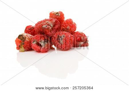 Rotten Raspberries With Mold Isolated On White Background. Uneatable Unhealthy Fruit.