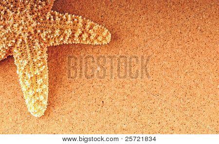 Pretty starfish on tan textured background