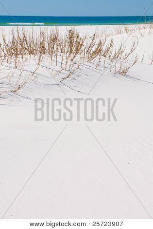 Pristine sand dune by emerald ocean