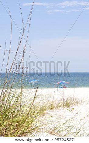 Beach umbrellas on beautiful seashore
