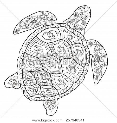 Color Therapy An Anti Stress Coloring Book Sea Turtle