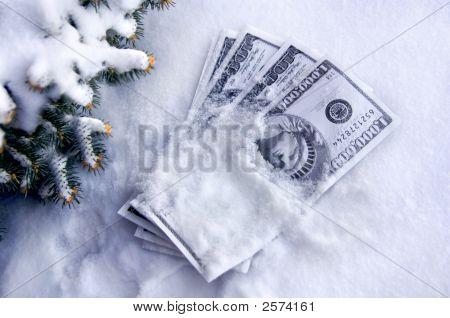 Cash is buried in snow. Fir tree frames corner of photo. Bills are spread in a fan shape. poster